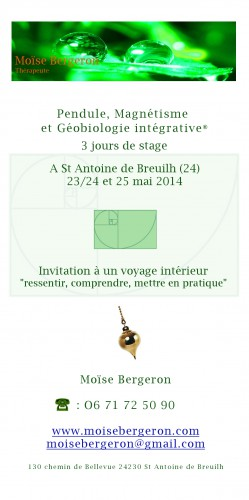 stage, pendule,magnétime,géobiologie,énergie,amour,apprendre,feng shuis